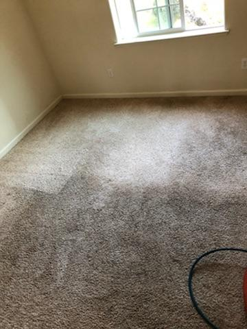 Carpet Cleaning Before And After Pioneer Cleaning Services